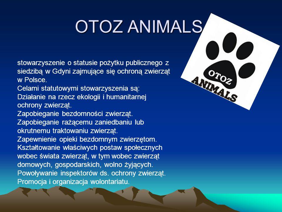 OTOZ ANIMALS stowarzyszenie o statusie pożytku publicznego z siedzibą w Gdyni zajmujące się ochroną zwierząt w Polsce.