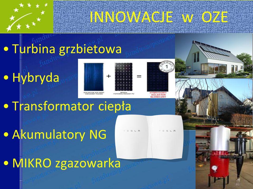 INNOWACJE w OZE Turbina grzbietowa Hybryda Transformator ciepła