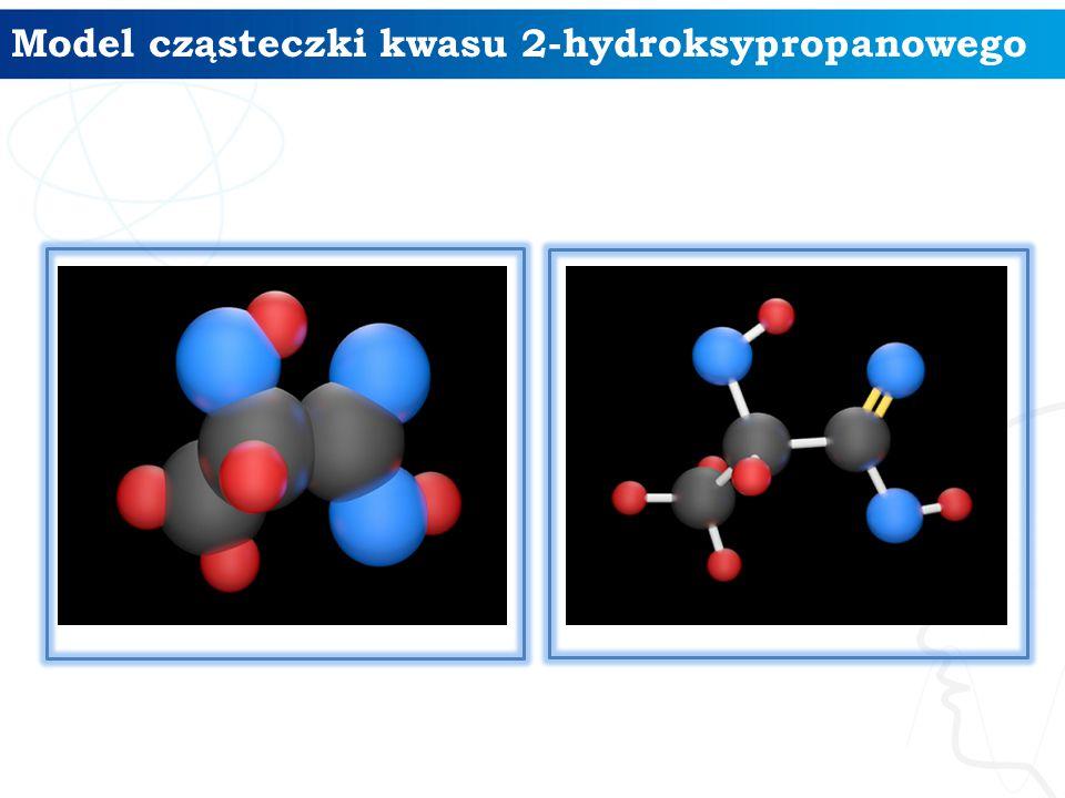 Model cząsteczki kwasu 2-hydroksypropanowego