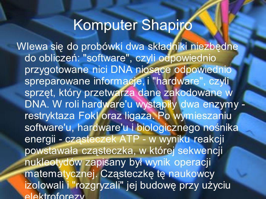 Komputer Shapiro