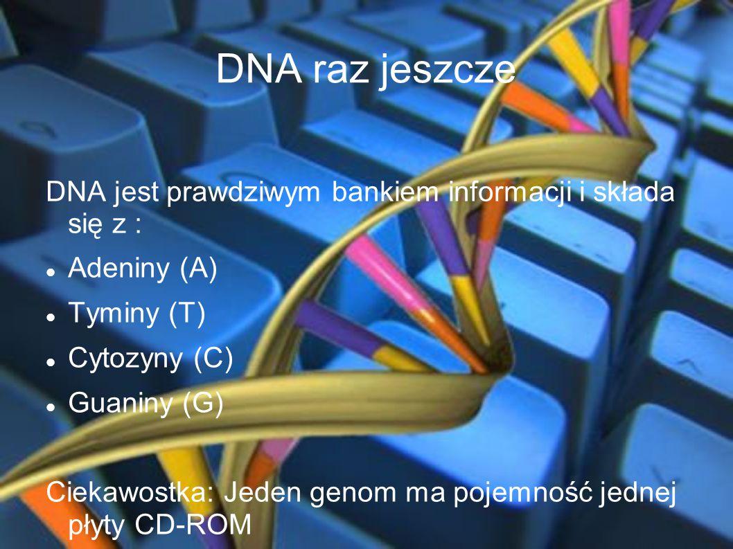 DNA raz jeszcze DNA jest prawdziwym bankiem informacji i składa się z : Adeniny (A) Tyminy (T) Cytozyny (C)