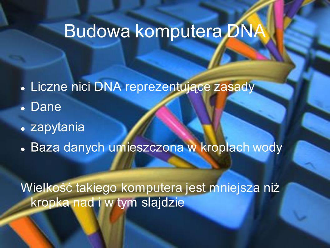 Budowa komputera DNA Liczne nici DNA reprezentujące zasady Dane
