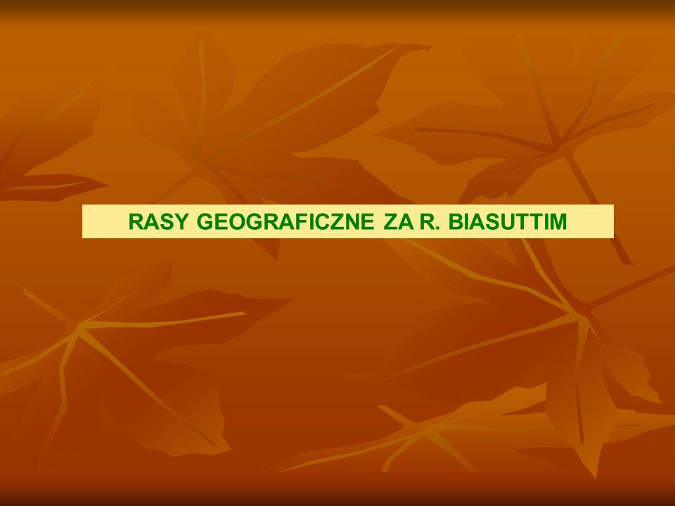 RASY GEOGRAFICZNE ZA R. BIASUTTIM