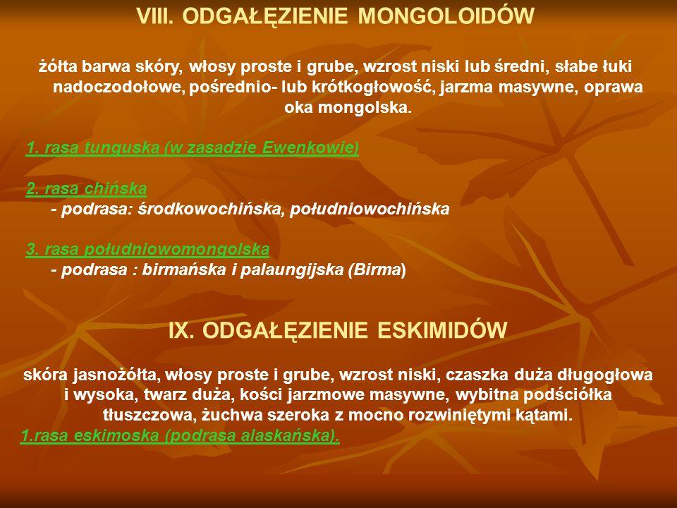 VIII. ODGAŁĘZIENIE MONGOLOIDÓW IX. ODGAŁĘZIENIE ESKIMIDÓW