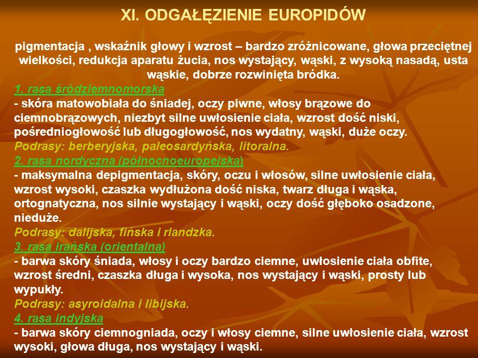 XI. ODGAŁĘZIENIE EUROPIDÓW