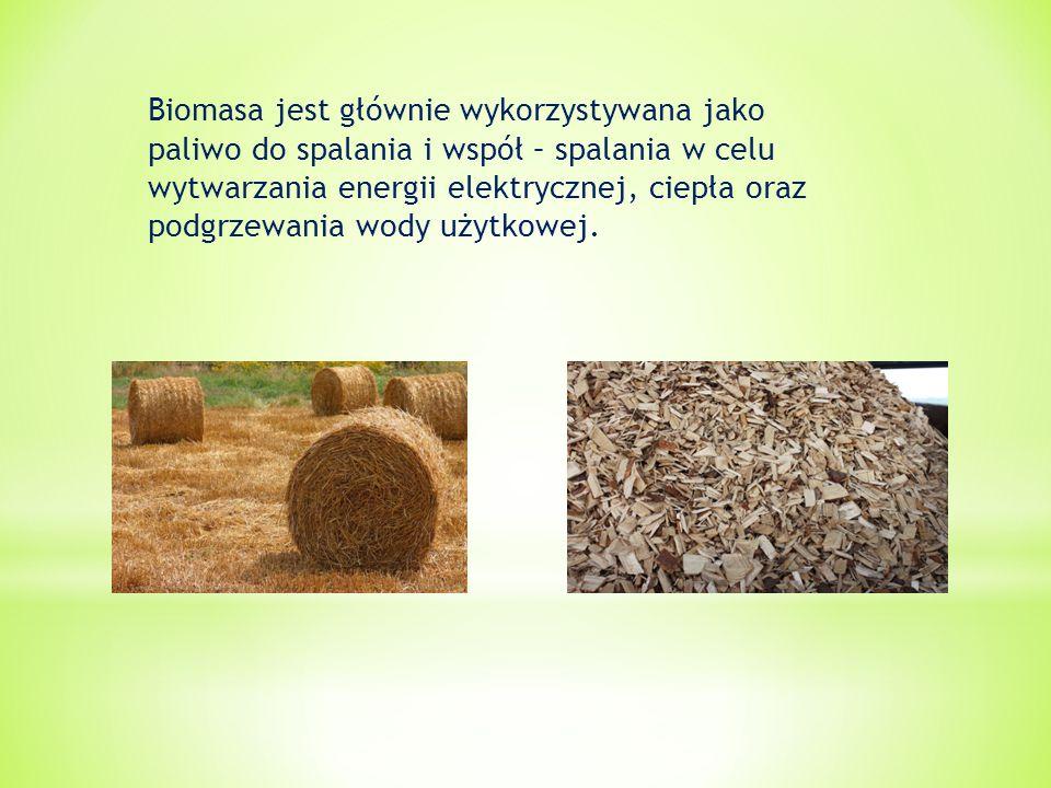 Biomasa jest głównie wykorzystywana jako paliwo do spalania i współ – spalania w celu wytwarzania energii elektrycznej, ciepła oraz podgrzewania wody użytkowej.