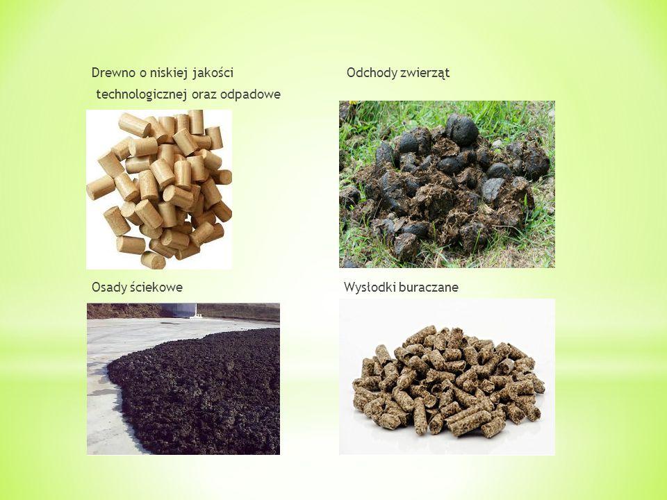 Drewno o niskiej jakości Odchody zwierząt