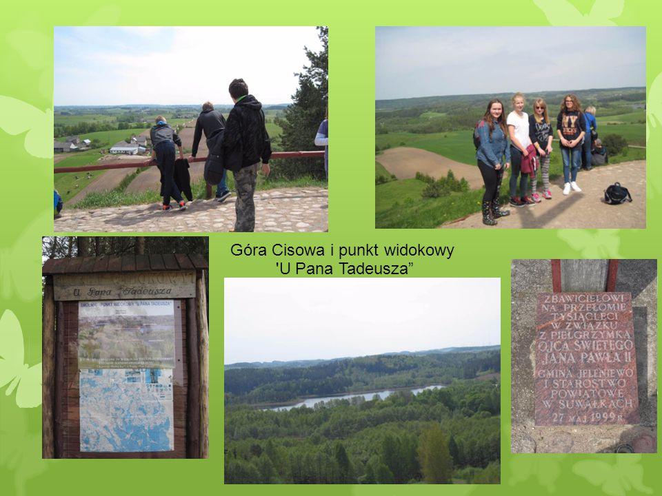 Góra Cisowa i punkt widokowy