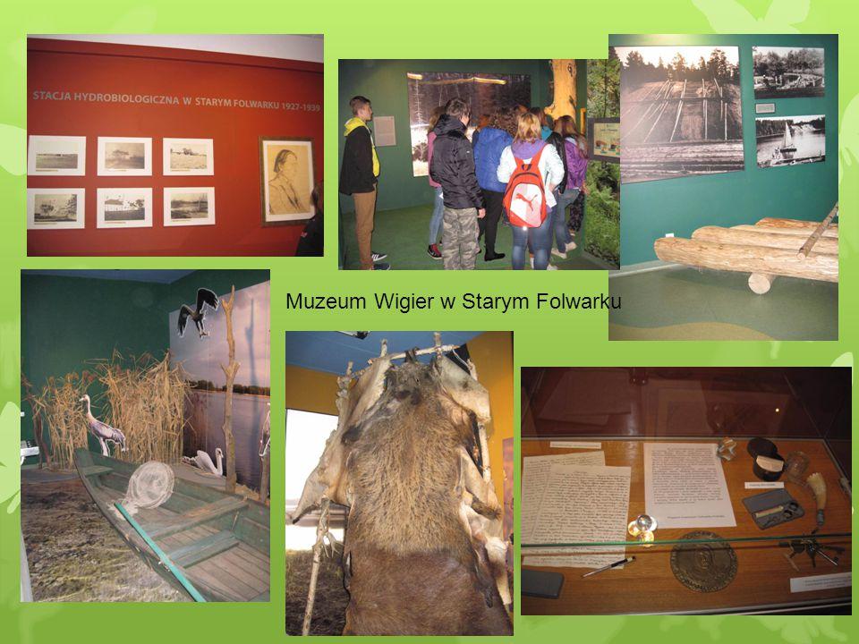 Muzeum Wigier w Starym Folwarku