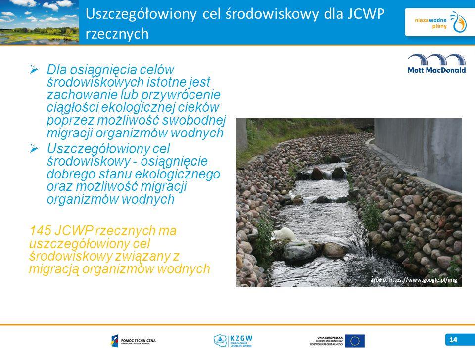 Uszczegółowiony cel środowiskowy dla JCWP rzecznych