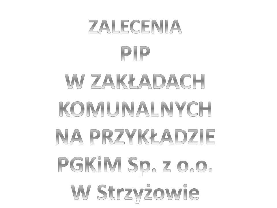NA PRZYKŁADZIE PGKiM Sp. z o.o.