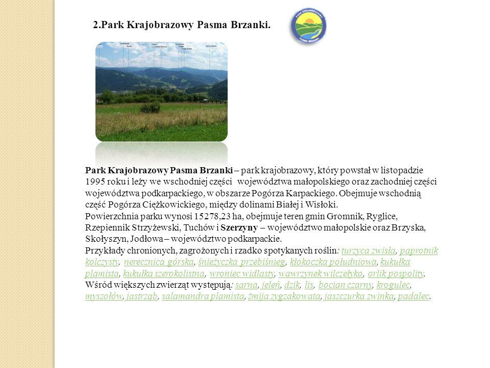 2.Park Krajobrazowy Pasma Brzanki.