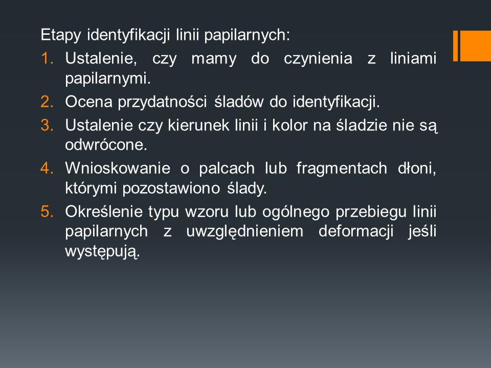 Etapy identyfikacji linii papilarnych: