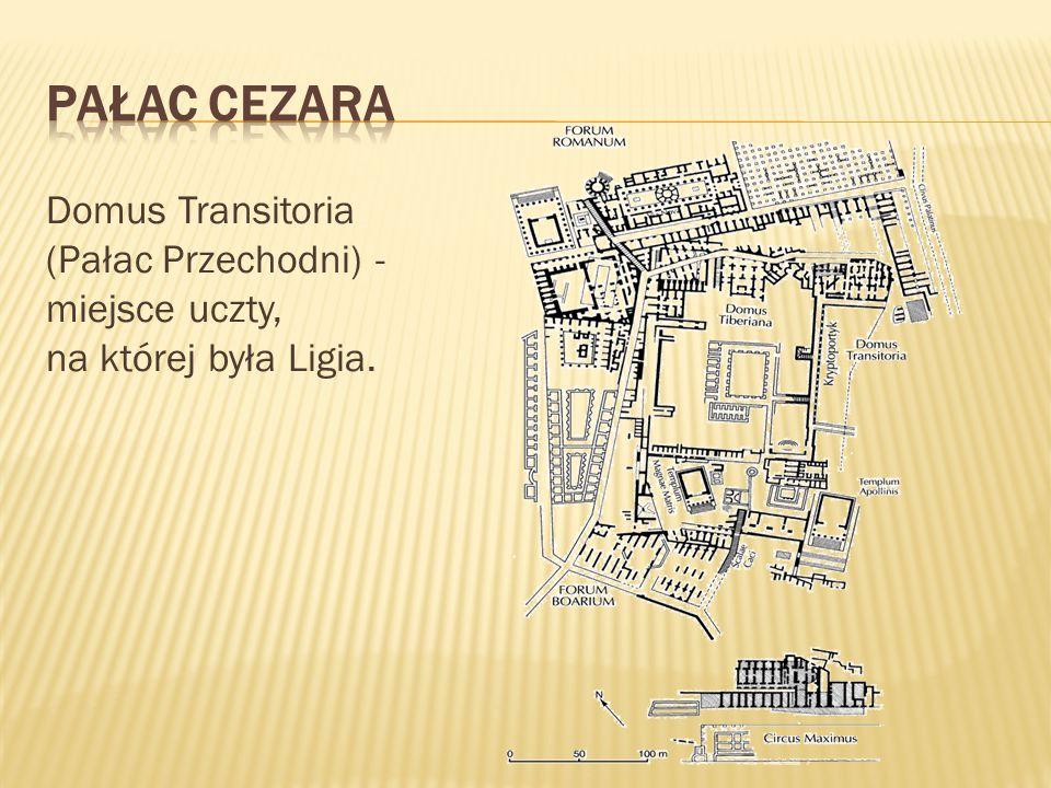 Pałac Cezara Domus Transitoria (Pałac Przechodni) -miejsce uczty, na której była Ligia.
