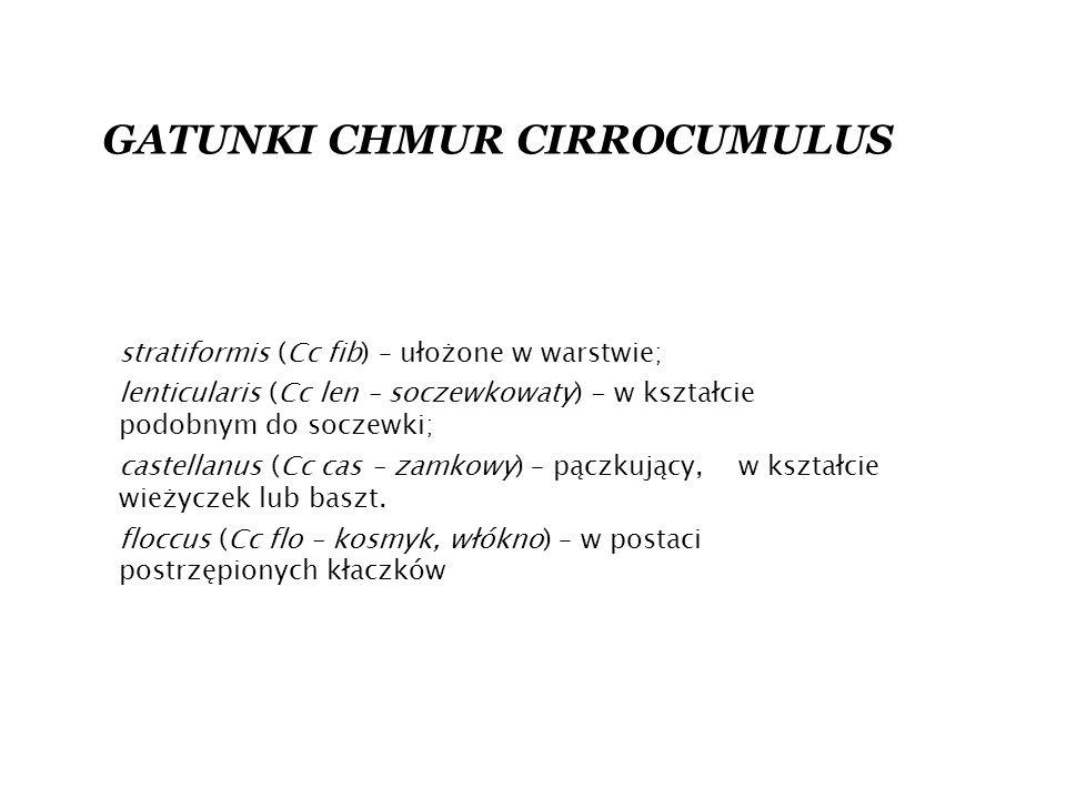 GATUNKI CHMUR CIRROCUMULUS