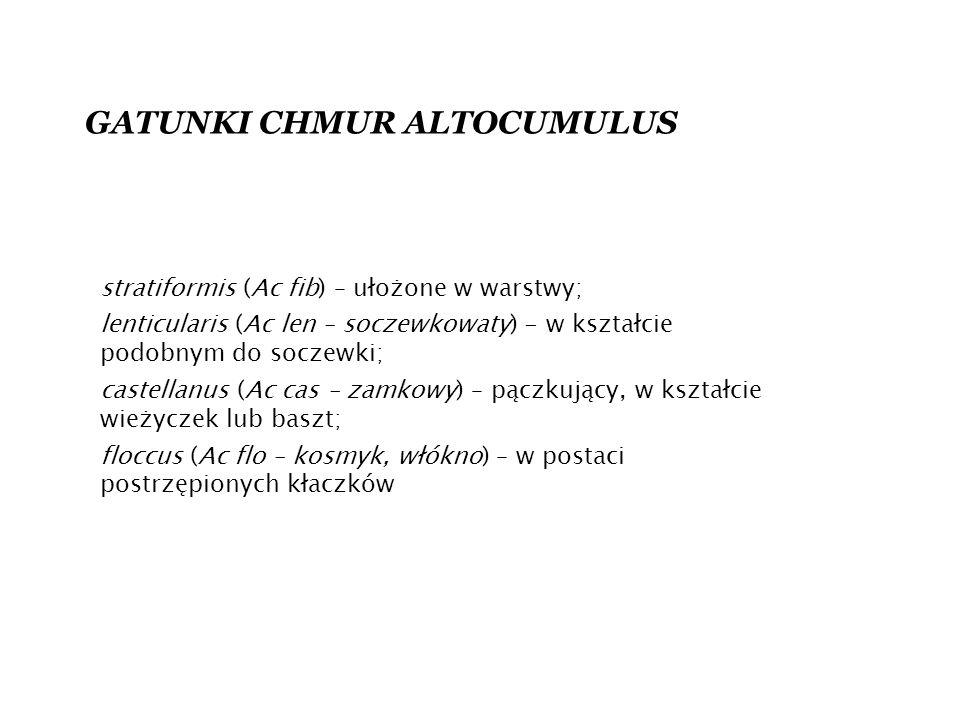 GATUNKI CHMUR ALTOCUMULUS