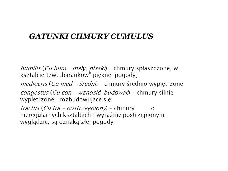 GATUNKI CHMURY CUMULUS