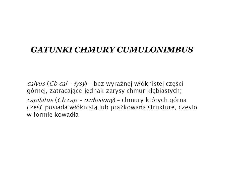 GATUNKI CHMURY CUMULONIMBUS