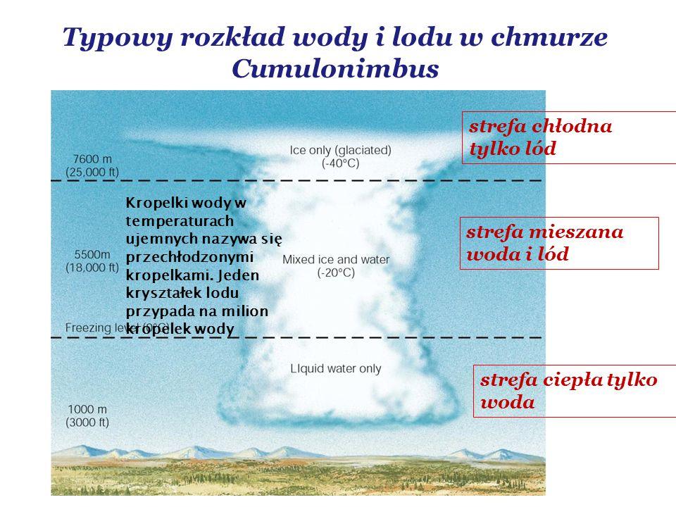 Typowy rozkład wody i lodu w chmurze Cumulonimbus