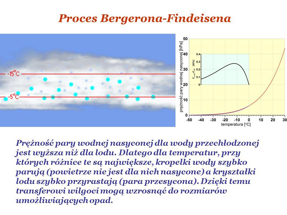 Proces Bergerona-Findeisena