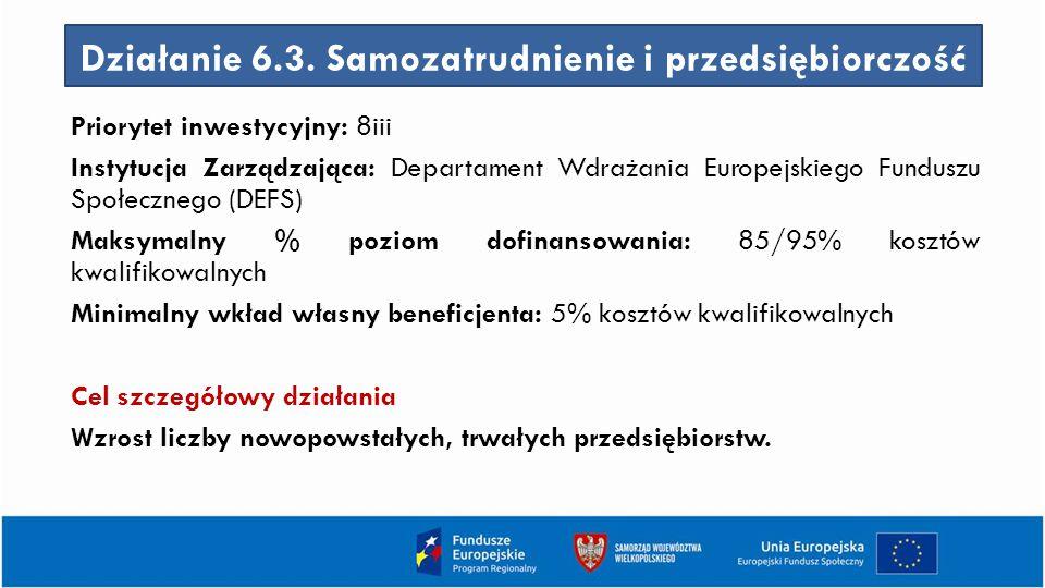 Działanie 6.3. Samozatrudnienie i przedsiębiorczość