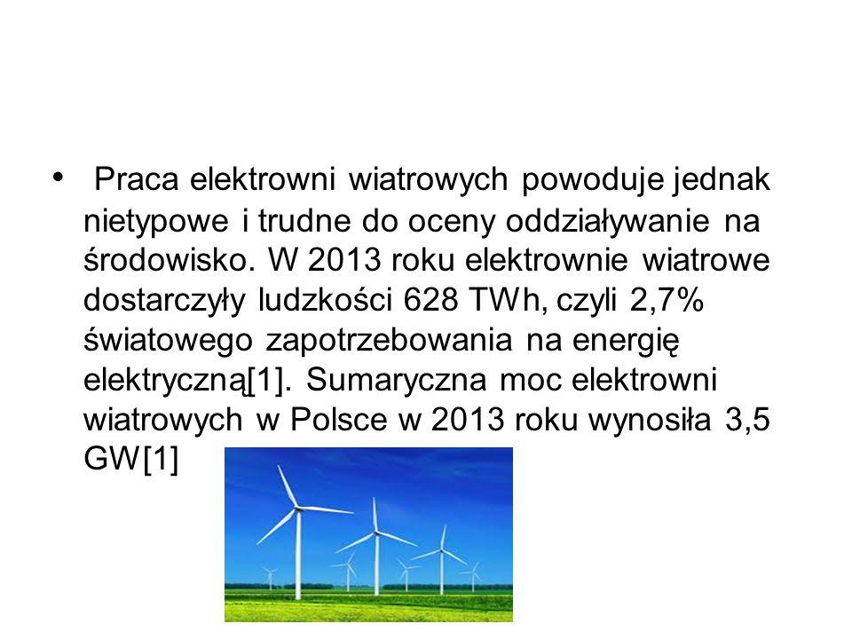 Praca elektrowni wiatrowych powoduje jednak nietypowe i trudne do oceny oddziaływanie na środowisko.