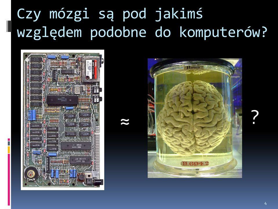 Czy mózgi są pod jakimś względem podobne do komputerów