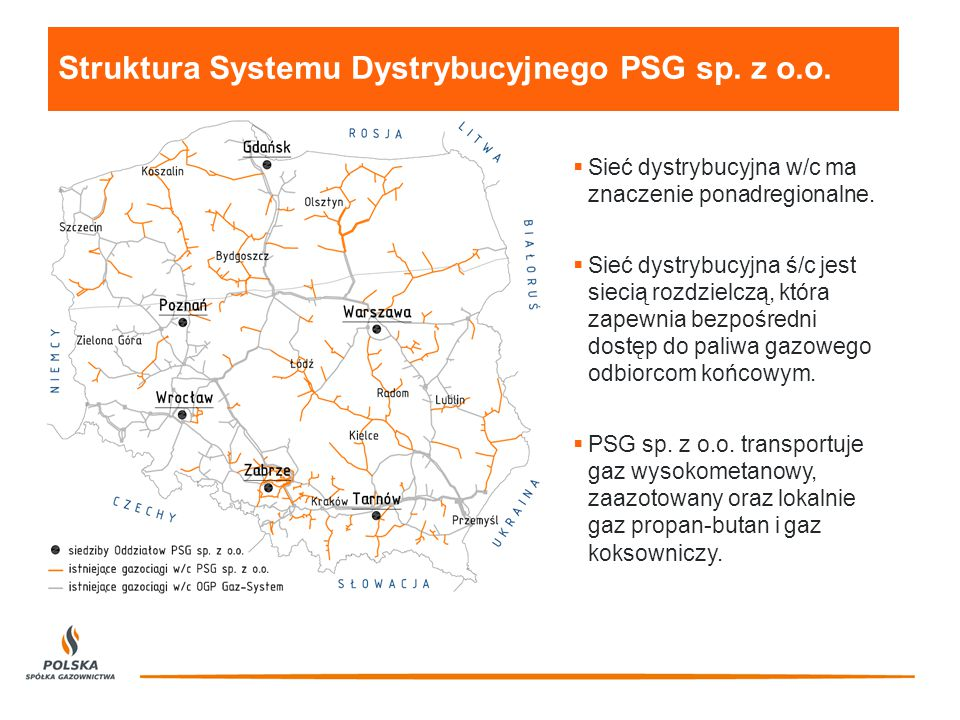 Struktura Systemu Dystrybucyjnego PSG sp. z o.o.