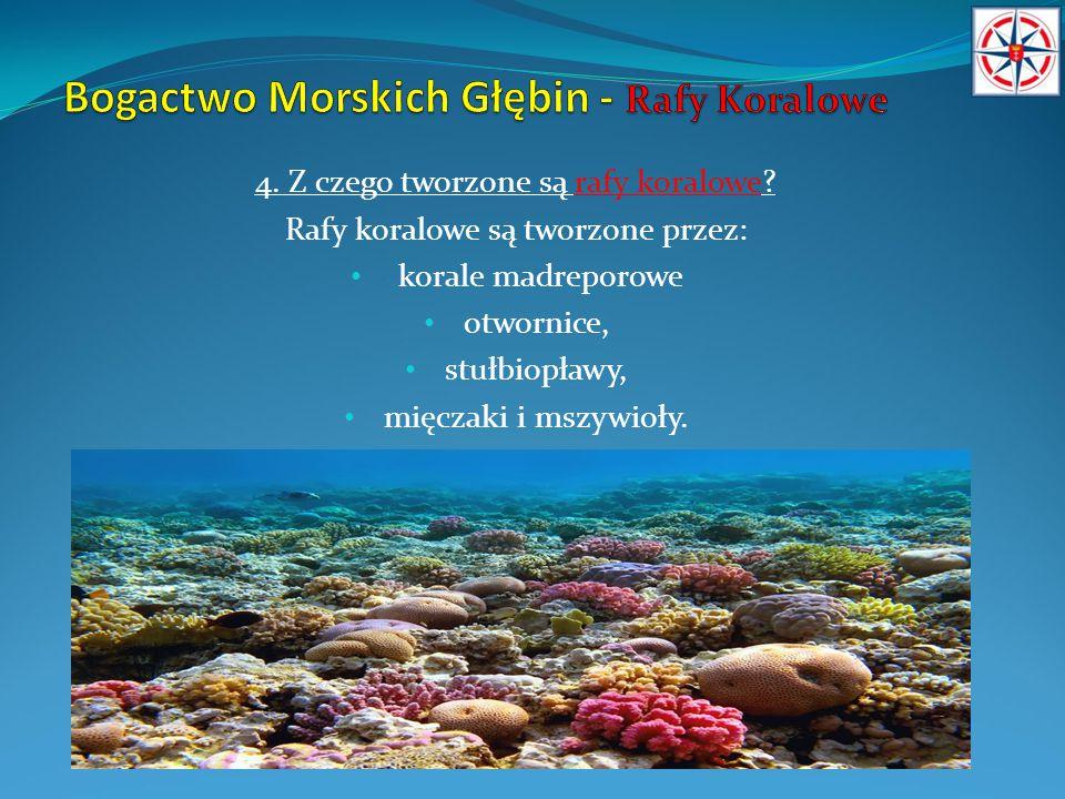 Bogactwo Morskich Głębin - Rafy Koralowe