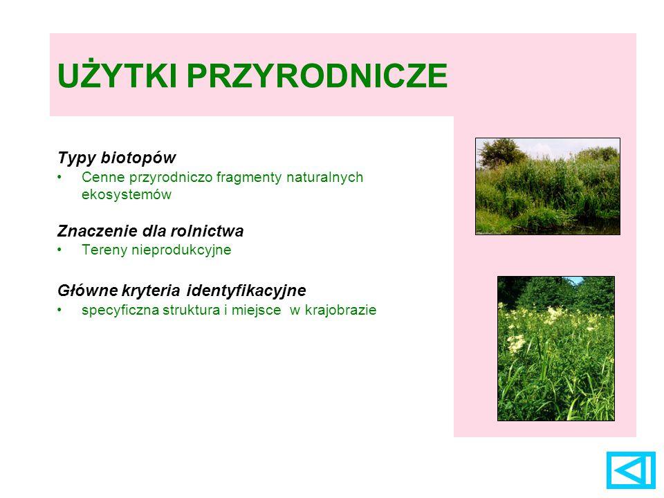 UŻYTKI PRZYRODNICZE Typy biotopów Znaczenie dla rolnictwa