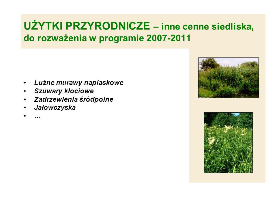 UŻYTKI PRZYRODNICZE – inne cenne siedliska, do rozważenia w programie 2007-2011