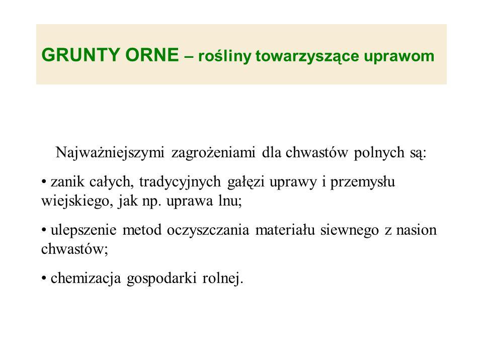 Najważniejszymi zagrożeniami dla chwastów polnych są: