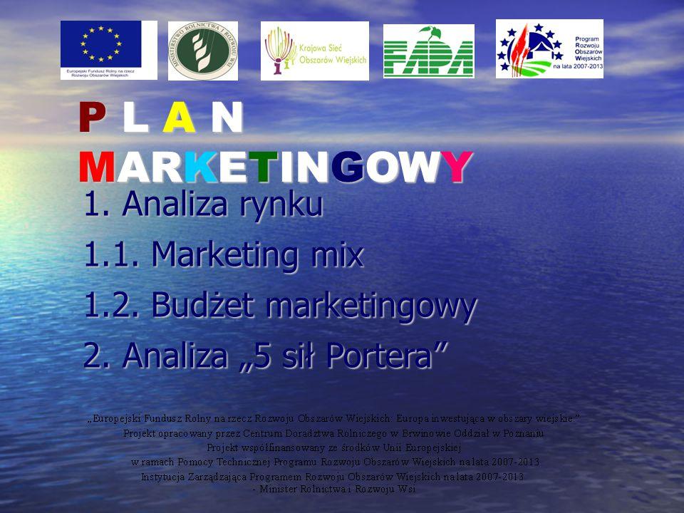 P L A N MARKETINGOWY 1. Analiza rynku 1.1. Marketing mix