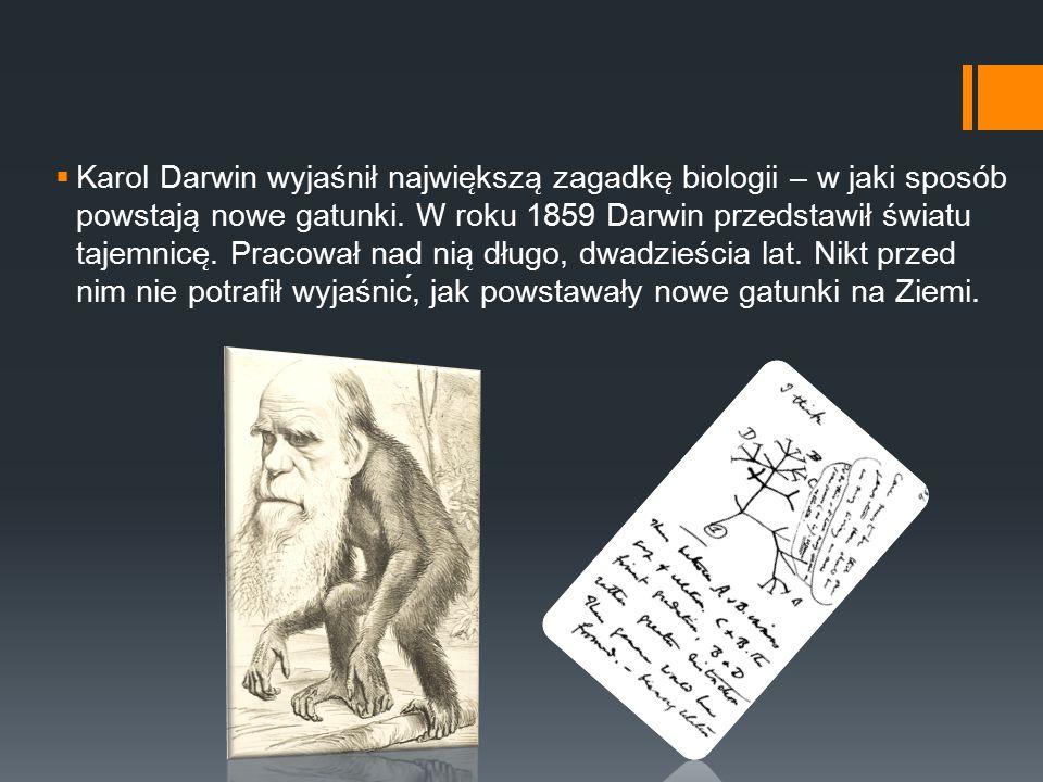 Karol Darwin wyjaśnił największą zagadkę biologii – w jaki sposób powstają nowe gatunki.