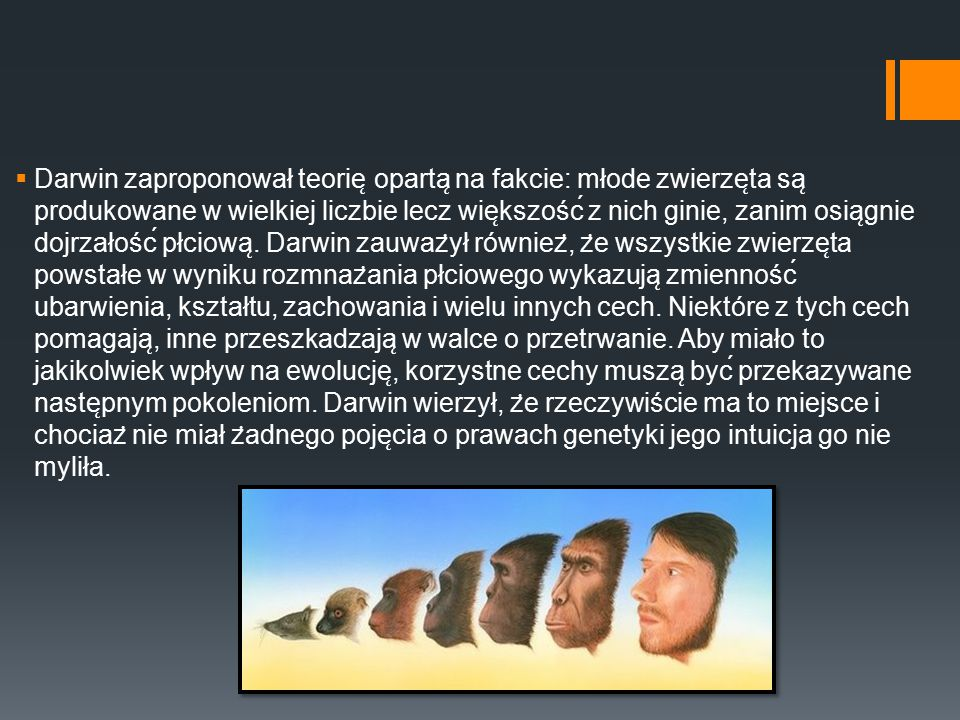 Darwin zaproponował teorię opartą na fakcie: młode zwierzęta są produkowane w wielkiej liczbie lecz większość z nich ginie, zanim osiągnie dojrzałość płciową.