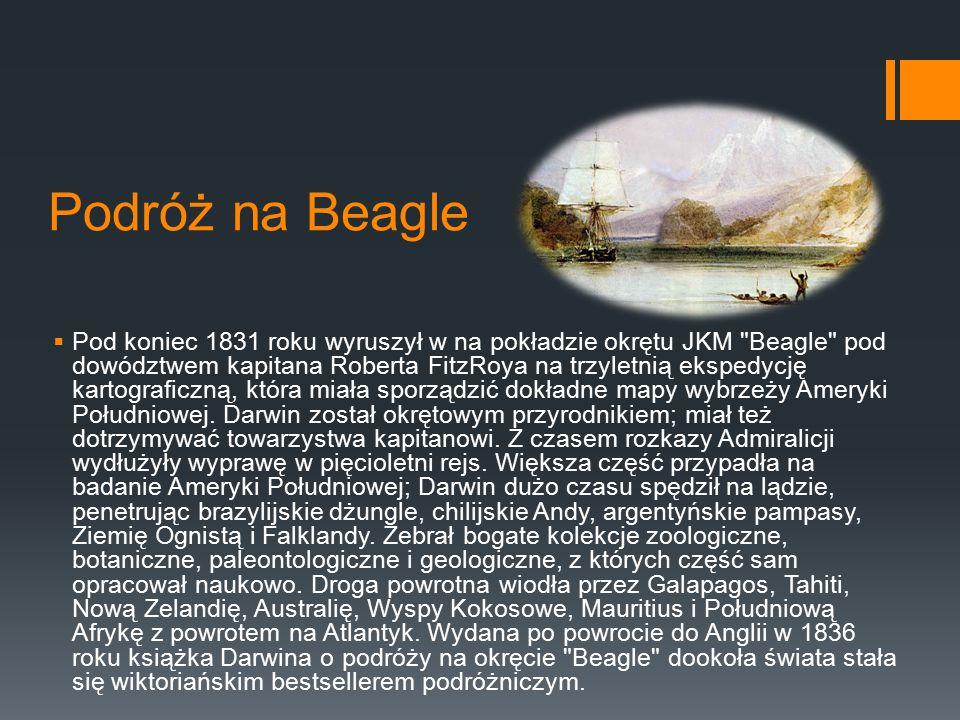 Podróż na Beagle