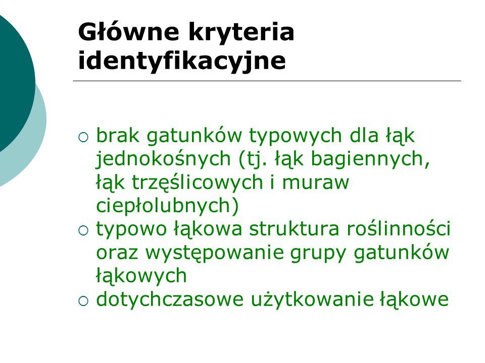 Główne kryteria identyfikacyjne