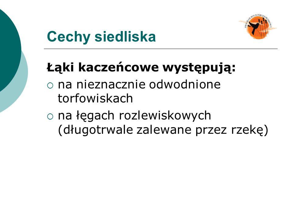 Cechy siedliska Łąki kaczeńcowe występują: