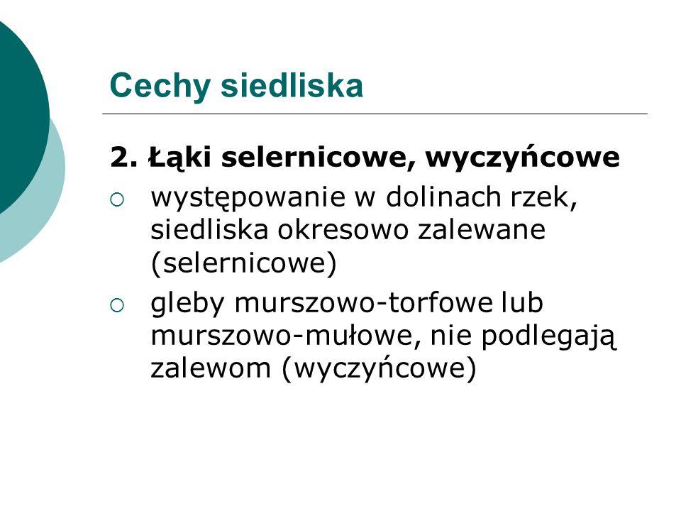Cechy siedliska 2. Łąki selernicowe, wyczyńcowe