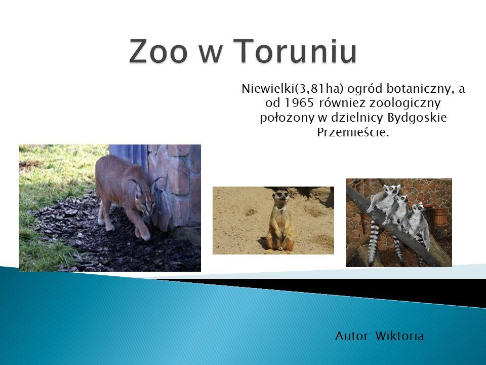 Zoo w Toruniu Niewielki(3,81ha) ogród botaniczny, a od 1965 również zoologiczny położony w dzielnicy Bydgoskie Przemieście.