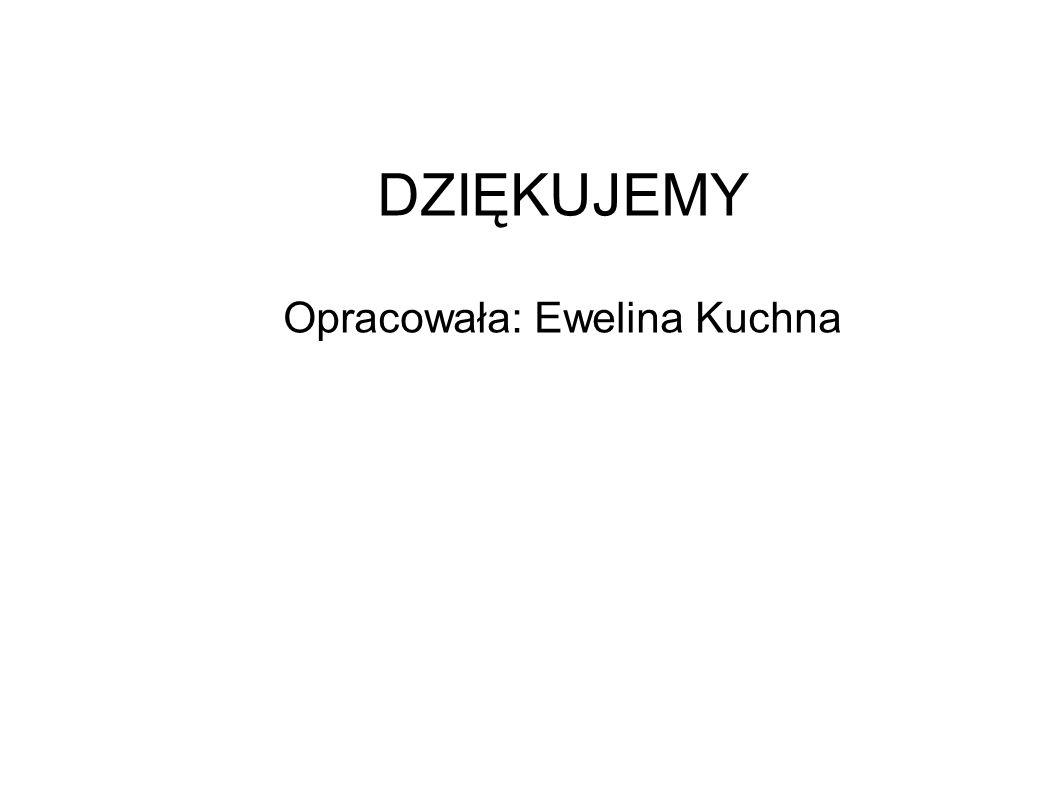 DZIĘKUJEMY Opracowała: Ewelina Kuchna
