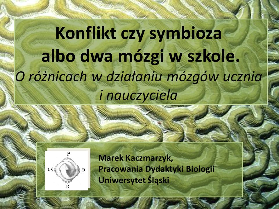 Marek Kaczmarzyk, Pracowania Dydaktyki Biologii Uniwersytet Śląski