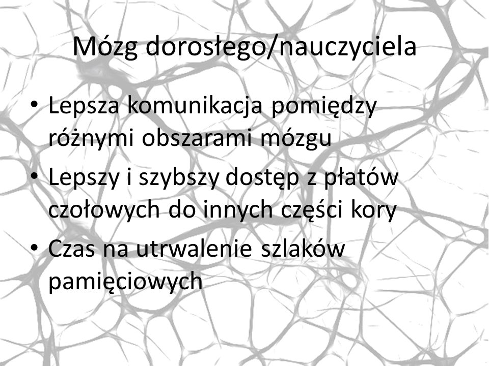 Mózg dorosłego/nauczyciela