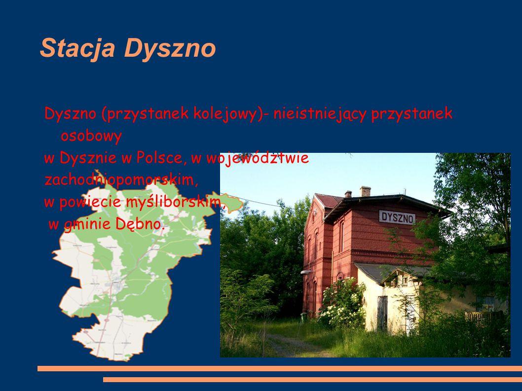 Stacja Dyszno Dyszno (przystanek kolejowy)- nieistniejący przystanek osobowy. w Dysznie w Polsce, w województwie.