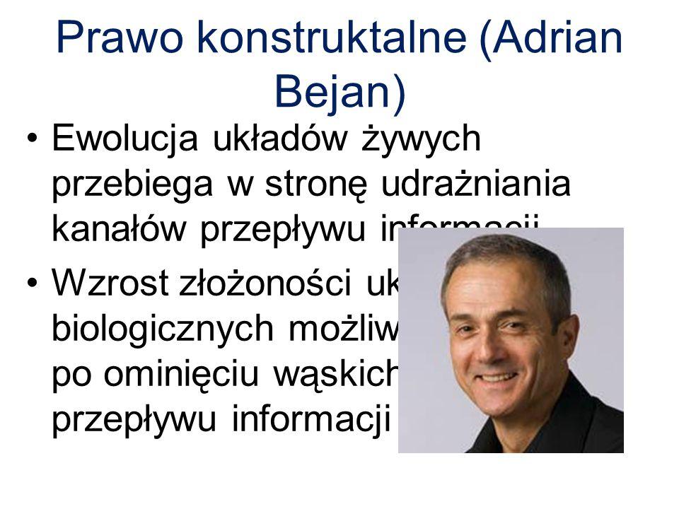 Prawo konstruktalne (Adrian Bejan)