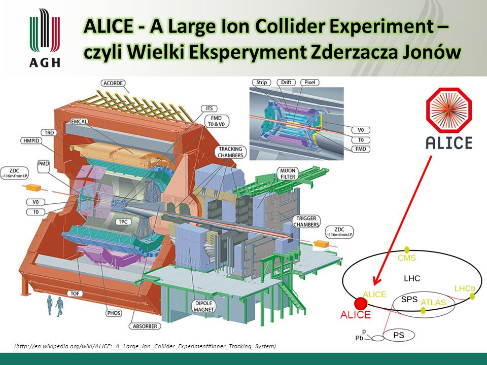 ALICE - A Large Ion Collider Experiment –