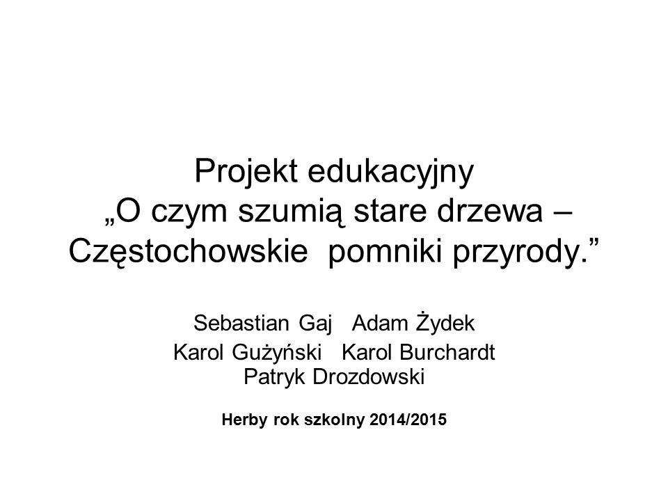 """Projekt edukacyjny """"O czym szumią stare drzewa – Częstochowskie pomniki przyrody."""