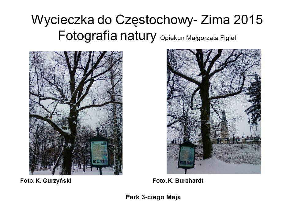 Wycieczka do Częstochowy- Zima 2015 Fotografia natury Opiekun Małgorzata Figiel