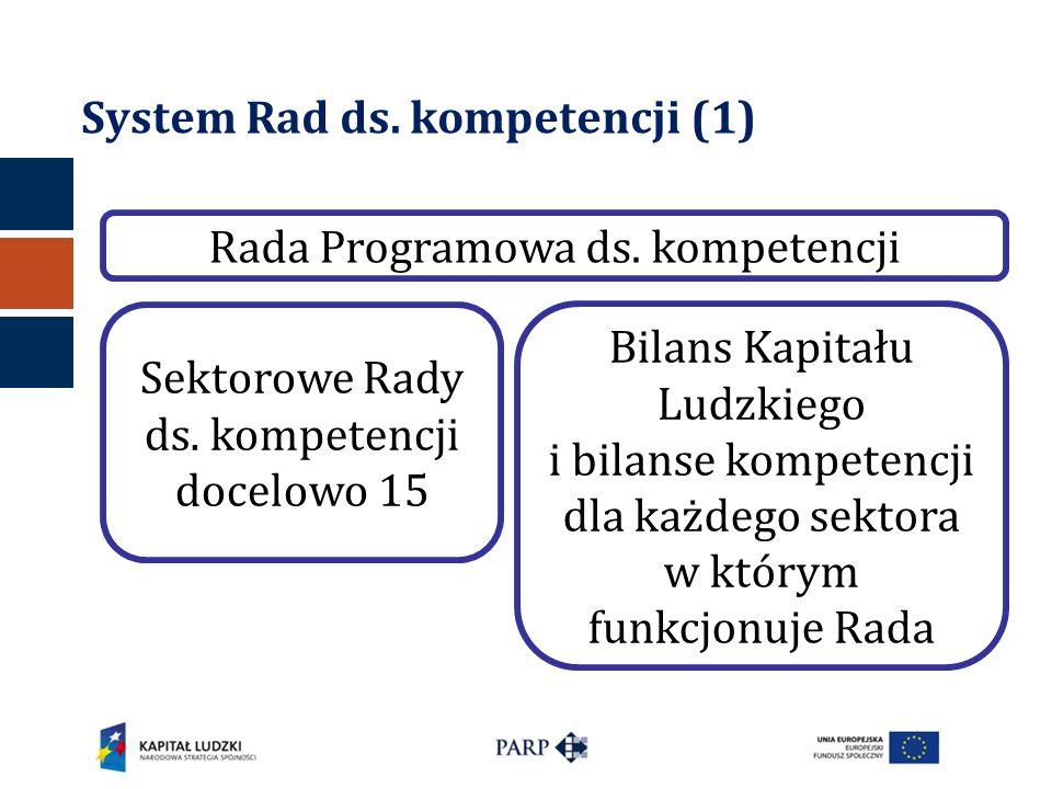 System Rad ds. kompetencji (1)