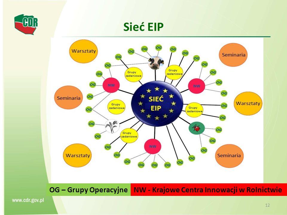 Sieć EIP OG – Grupy Operacyjne